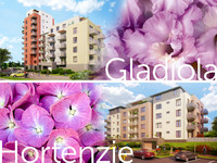 New apartments in Gladiola and Hortenzie are now on sale