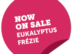Apartments from Eukalyptus and Frézie now on sale