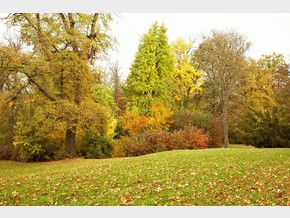 Castle park - Autumn