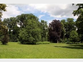 Castle park - Spring/Summer