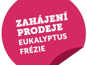 Eukalyptus, Frézie v prodeji